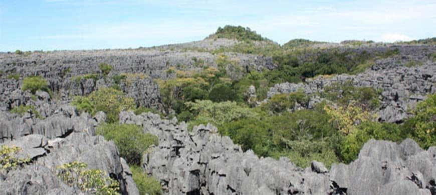 Racing Madagascar : Un Trail-Running Inédit Organisé Dans Le Nord De Madagascar