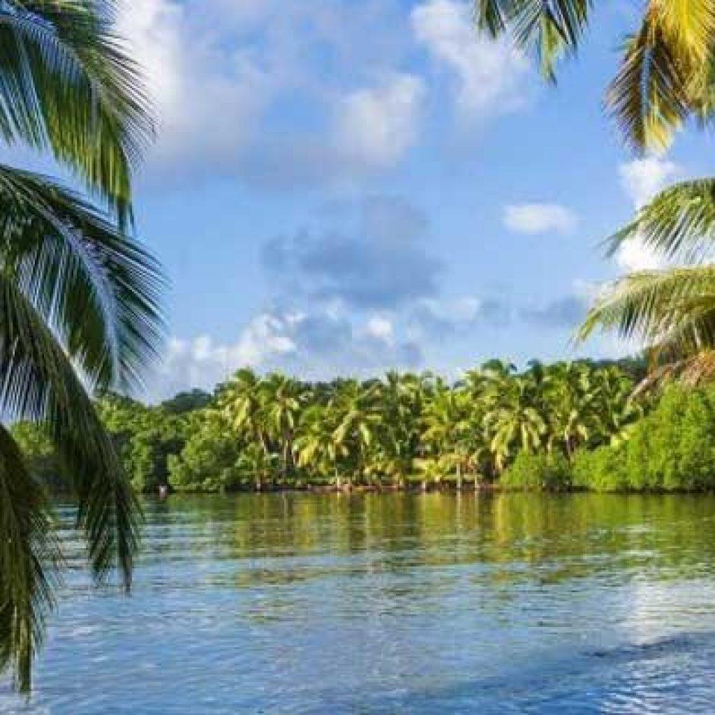 Fénérive Est : explorer la splendide île Nosy Akoho