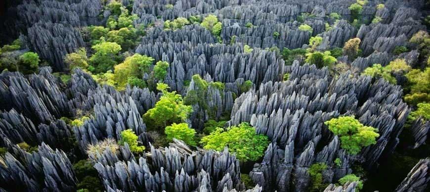La réserve naturelle intégrale du Tsingy de Bemaraha