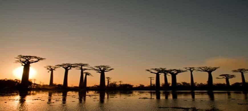 Le Top 5 des meilleurs endroits pour prendre des photos à Madagascar