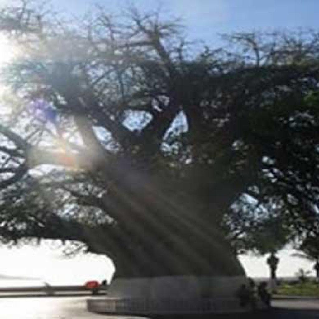 Mahajanga en fête – Redynamiser le tourisme intérieur
