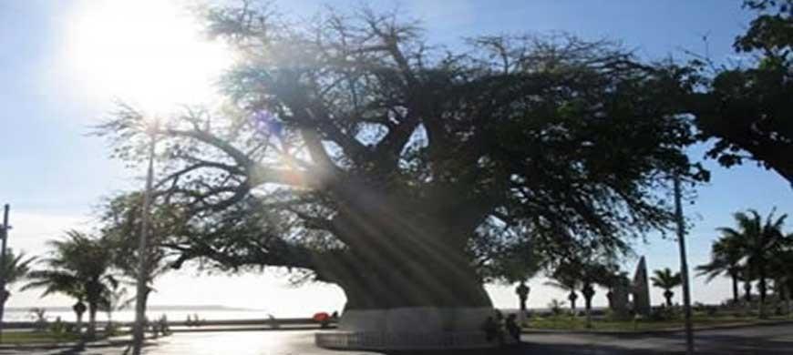 Mahajanga in party - revitalizing domestic tourism