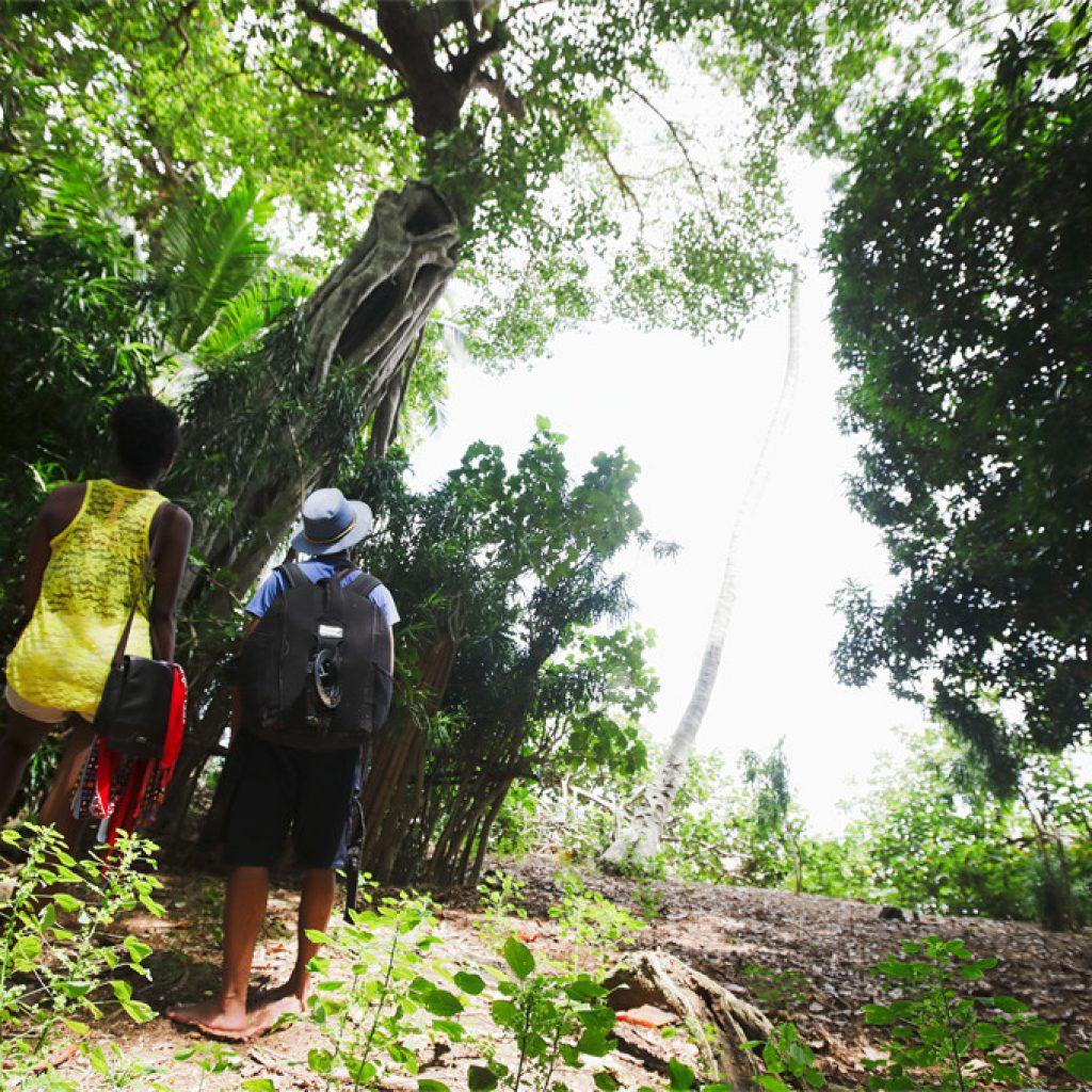 5e édition du Nosy Be Trail: un parcours paradisiaque sous les tropiques