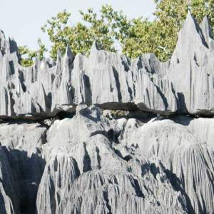 Ouest-Express-Tsingy-et-Baobabs (5)