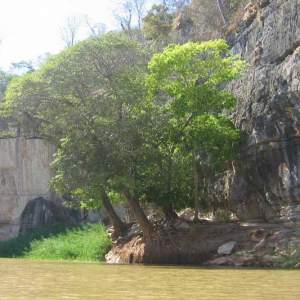 Ouest-Express-Tsingy-et-Baobabs (6)