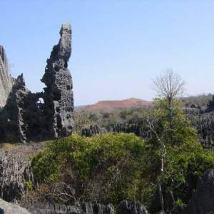 Ouest-Express-Tsingy-et-Baobabs (7)