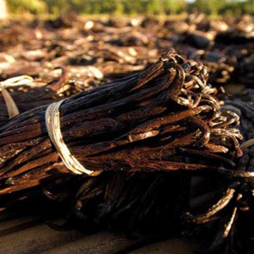 Vanilla per onorare Prenotazione Hotel in Madagascar